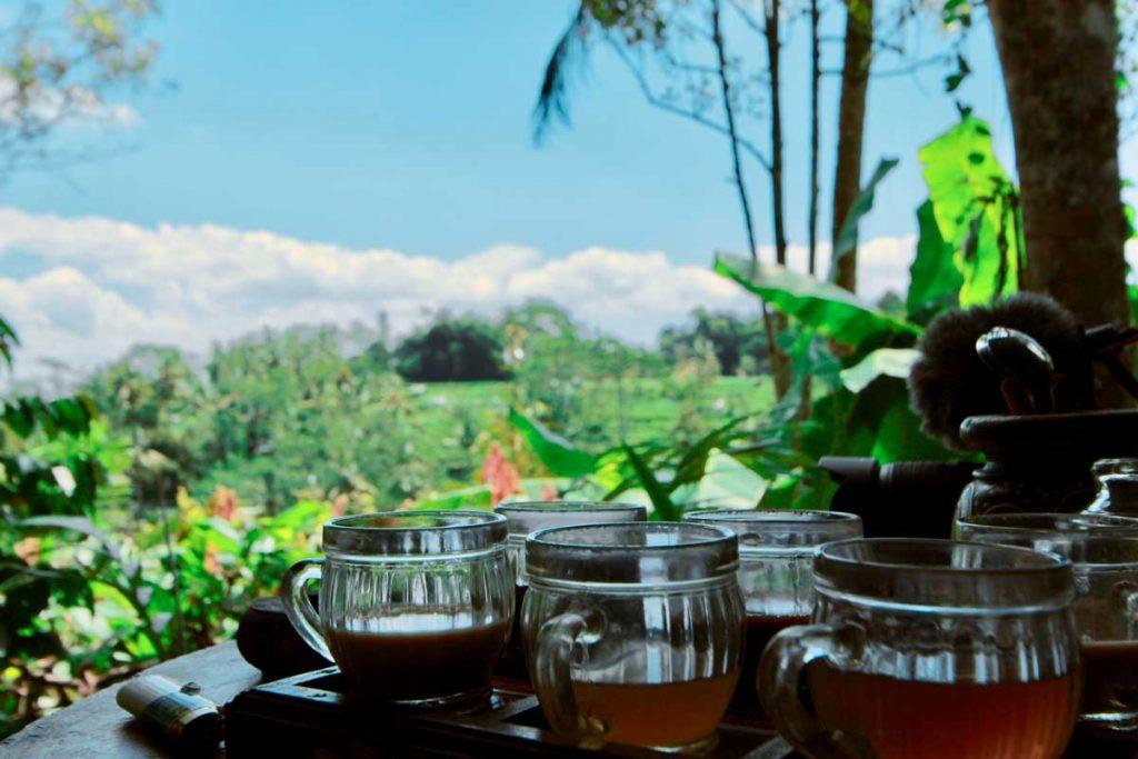 Histoire et Nature - Bali Exotique Francophone